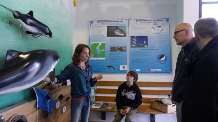 Schweinswalschutz