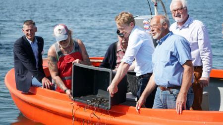 Sechs Männer stehen in einem Boot. Sie schütten kleine Fische ins Wasser.
