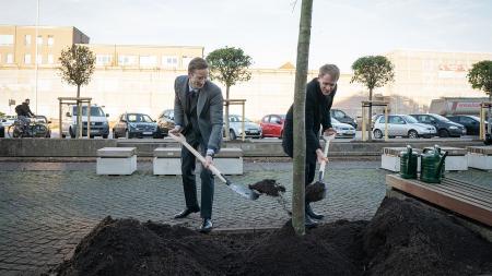 Zwei Männer mit Schaufeln stehen vor einem Baum.