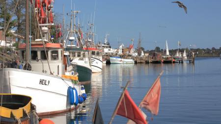 Mehrere Fischerboote liegen an einem Anleger