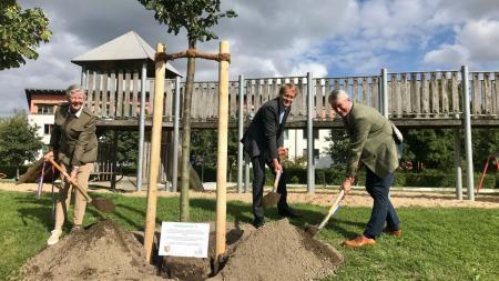 Ministerpräsident Günther (Mitte) und Vertreter der Stiftung pflanzten gemeinsam eine Silberlinde in der Wik.